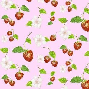 Strawberry Joy by Anna