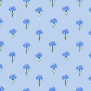 Cornflowers Small