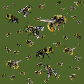 Lina's Bee Swarm on olive green