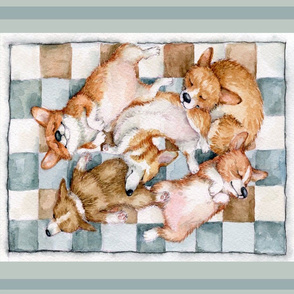 Cute Corgi  Litter Sleeping Inga Izmaylova 18 by 21