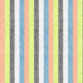 circus stripe vertical 1A