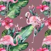 Flamingo23-7_shop_thumb