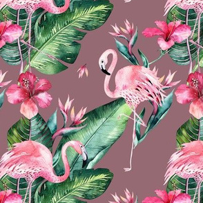 Watercolor tropical flamingo bird 13