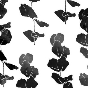 Eucalyptus  Leaves Black  &  White