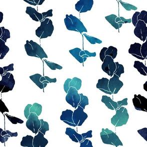 Eucalyptus navy