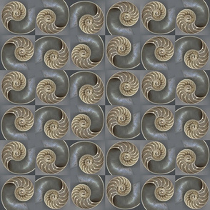 Nautilus Shell-ed