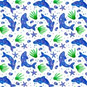 Delfin austral