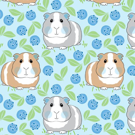 Rguinea-pigs-with-blueberries_shop_preview