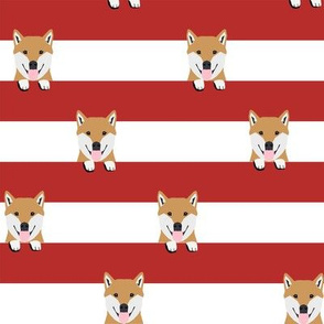 shiba inu stripes dog breed pet fabric red
