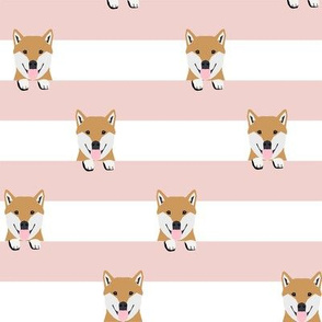 shiba inu stripes dog breed pet fabric pink