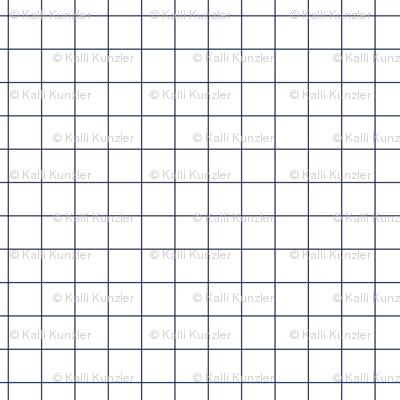 "1/4"" Navy Grid"