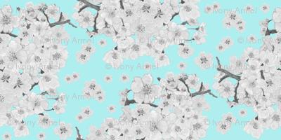 Black & White Cherry Blossom