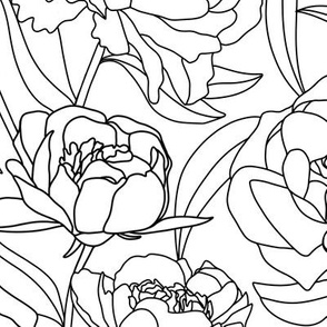 Peony contour line drawing - large