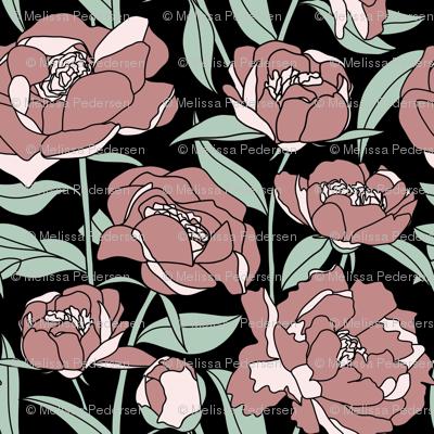 Pink peonies on black background
