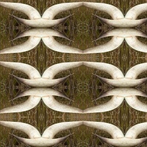 Longhorn Links in brown and white