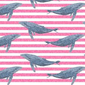 whale ocean animal whales nautical fabric stripe pink