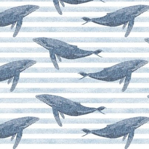 whale ocean animal whales nautical fabric stripe blue