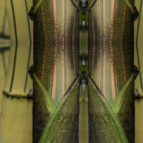 Bamboo Shields