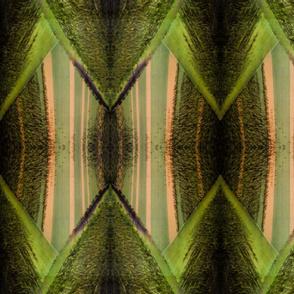 Bamboo Geometrics