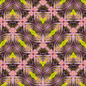 Organic Scalloped Zigzag