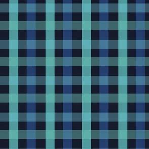 Chequered blue plaid