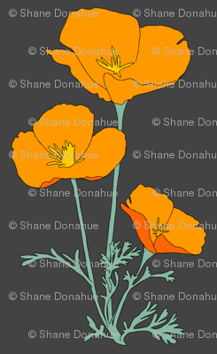 Poppies_vector_preview