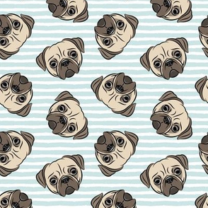 Pugs on baby blue stripes - pug cute dog face
