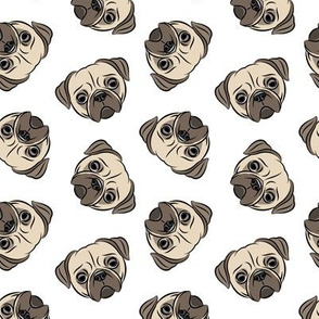 Pugs - pug cute dog face