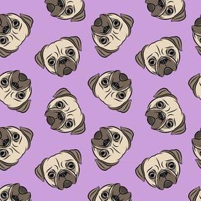Pugs on purple - pug cute dog face
