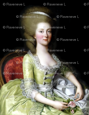 Marie Antoinette inspired princesses yellow gowns lace baroque victorian beautiful lady woman beauty portraits pouf ballgowns pink flowers Bouffant rococo  elegant gothic lolita egl 18th  century neoclassical  historical grey white hair  vintage