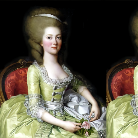 Marie Antoinette inspired princesses yellow gowns lace baroque victorian beautiful lady woman beauty portraits pouf ballgowns pink flowers Bouffant rococo  elegant gothic lolita egl 18th  century neoclassical  historical grey white hair  vintage    fabric by raveneve on Spoonflower - custom fabric