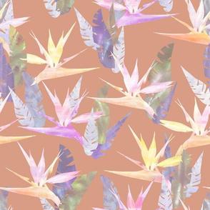 birdie tropical blush