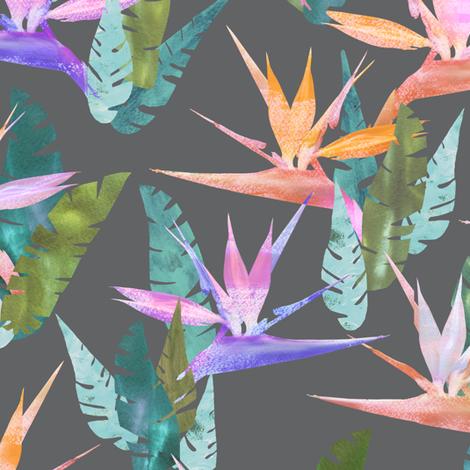 birdie tropical gray fabric by schatzibrown on Spoonflower - custom fabric
