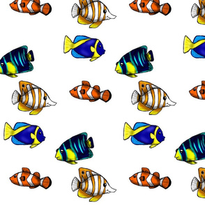 Fish in the Sea- White Background
