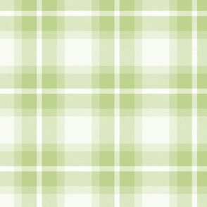 Plaid Tartan Green Lettuce