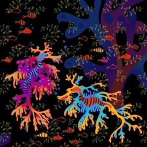 rainbow sea dragons