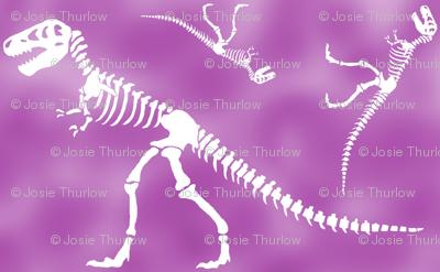 t rex 2 reflection purples