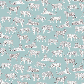 White Bengal Tiger | Teal Background