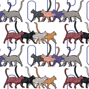 8 cats walking back + forth by Su_G