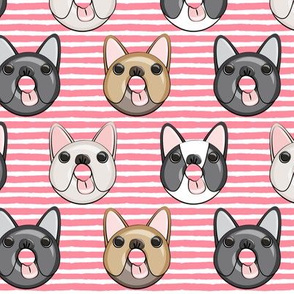 Frenchie - French Bulldog donuts (pink stripes)