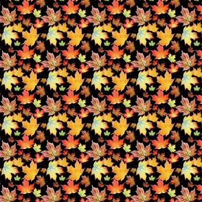 Autumn Maple Leaves 4 inch repeat on black