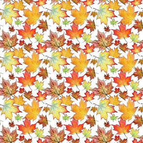 Autumn Maple Leaves 6 inch repeat