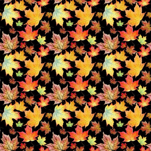 Autumn Maple Leaves 6 inch repeat on black