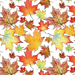 Autumn Maple Leaves 12 inch repeat
