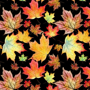 Autumn Maple Leaves 12 inch repeat on black