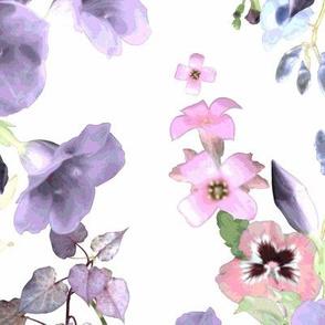 Allamandas in the Garden Purple
