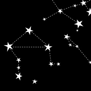 stars in the zodiac white on black (large scale)
