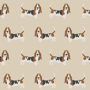 basset hound standing dog breed fabric tan