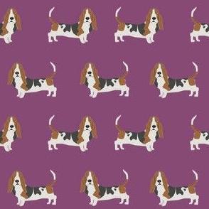 basset hound standing dog breed fabric purple