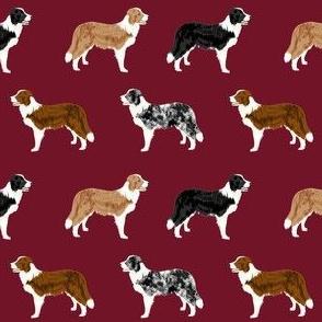 border collie mixed coats dog breed fabric burgundy